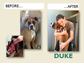 DUKE.Before.After