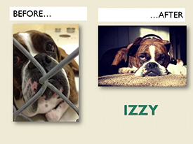 IZZY.Before.After