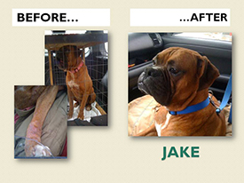 JAKE.Before.After
