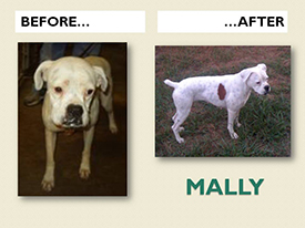 MALLY.Before.After