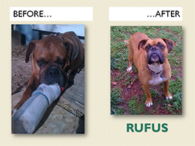 RUFUS.Before.After
